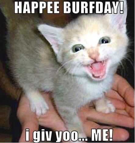 Happy Birthday Memes funny and cute