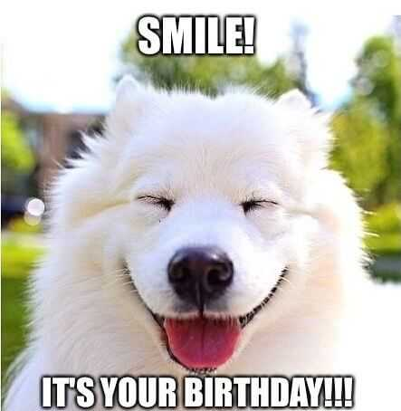 Happy Birthday Memes funny with smiling dog
