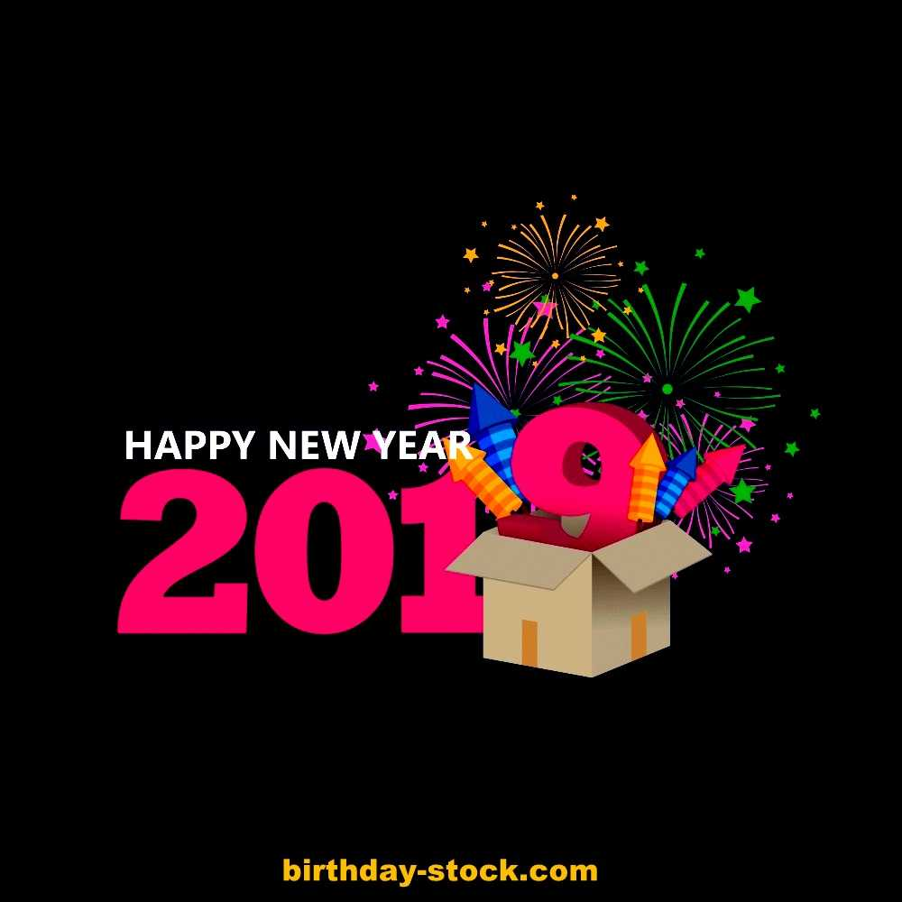 Happy New Year 2019 with Girlish Colors