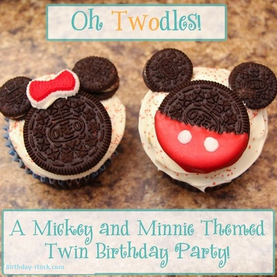 Happy Birthday Ideas for Twins Girls