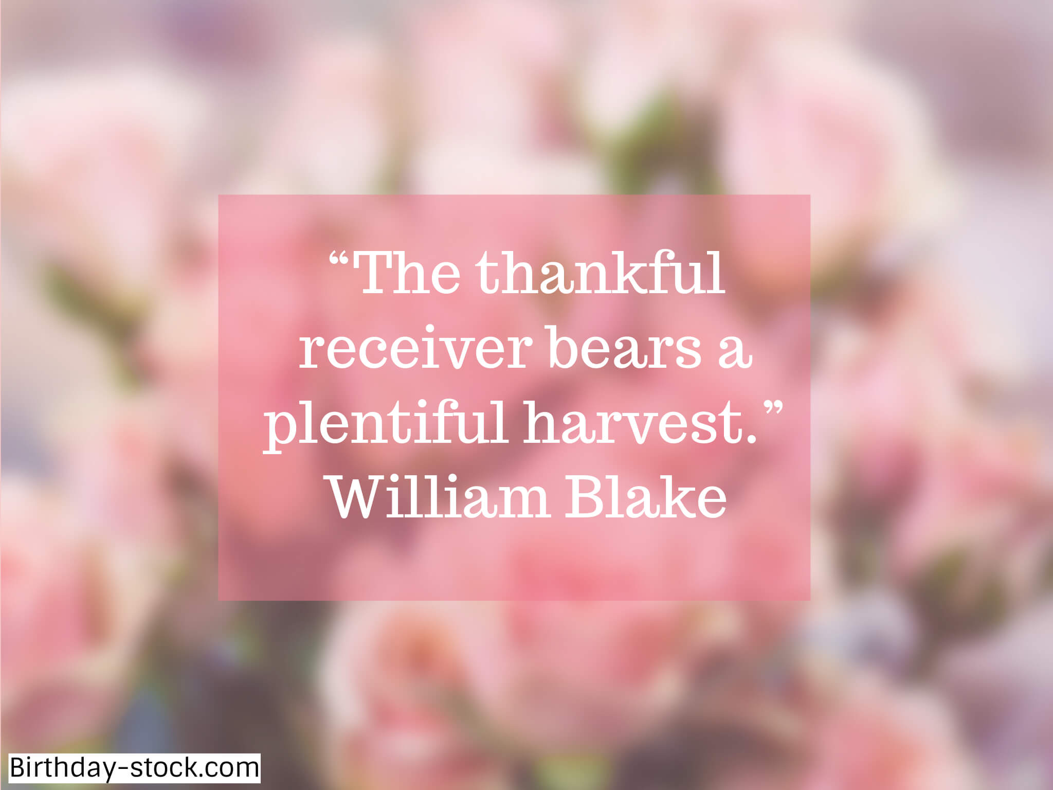 Happy Thanksgiving Day Sayings 2019