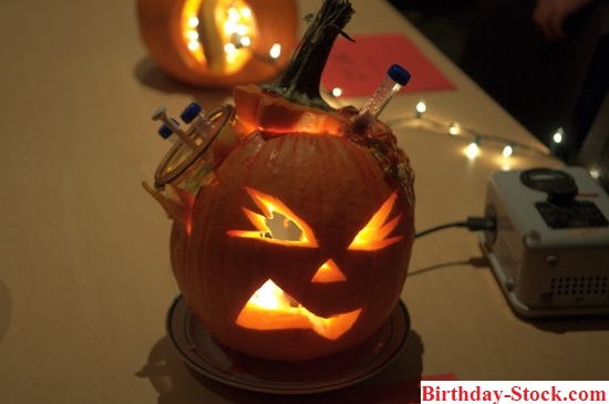 Pumpkin carving ideas 2020 with Lab Routine